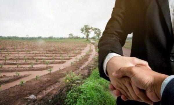 أسباب إتجاه الأشخاص للمشاريع الزراعية المربحة