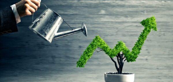 تصنيف المشاريع الزراعية المربحة